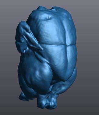 Escaneo completo en 3D del pollo Exceldor