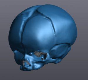 Digitalização 3D azul de um crânio humano no VXmodel